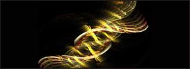 DNA Articolo